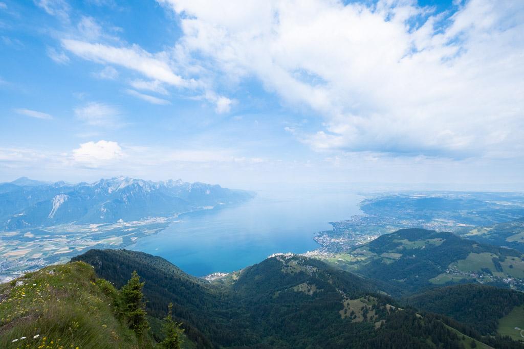 Via Alpina - Vue sur le Lac Léman