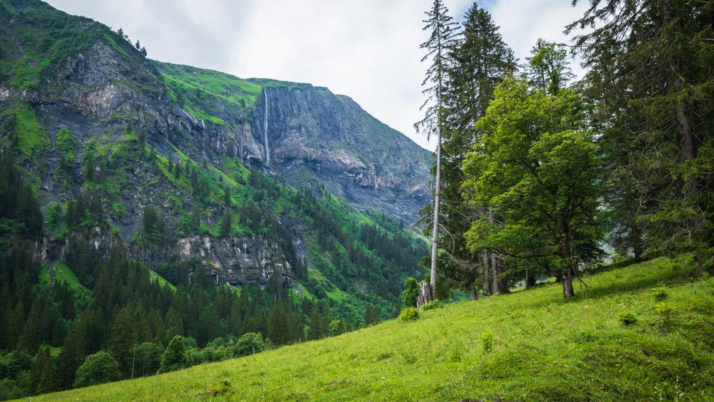 Via Alpina - De Weisstannen à Elm