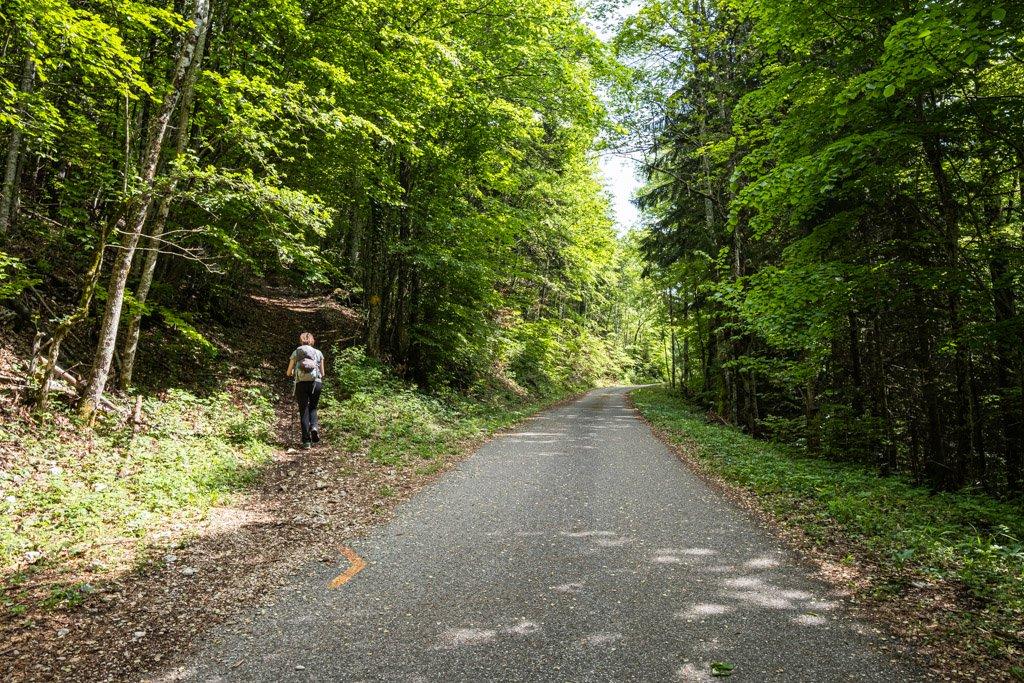 Sentier partant de la route avec une marque au sol pour nous indiquer le chemin