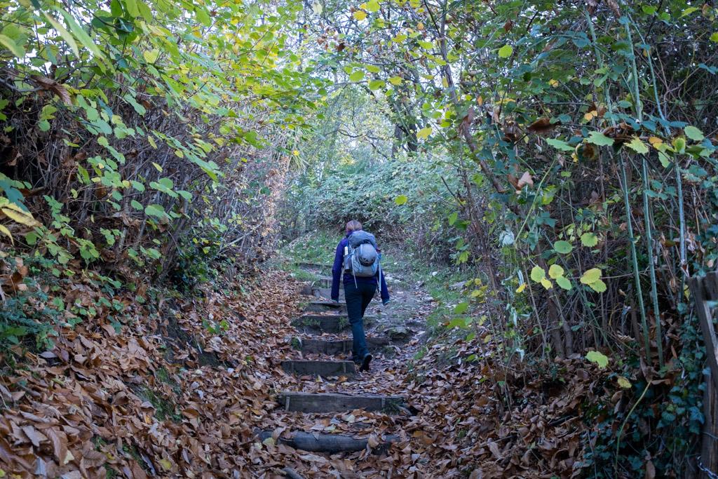Marches lors de la montée au San Salvatore