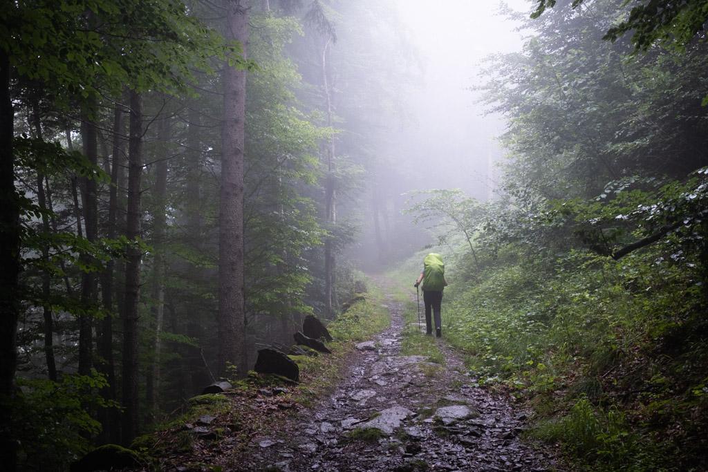 Via Alpina - En montant en direction de Weisstannen (St-Gall, Suisse)