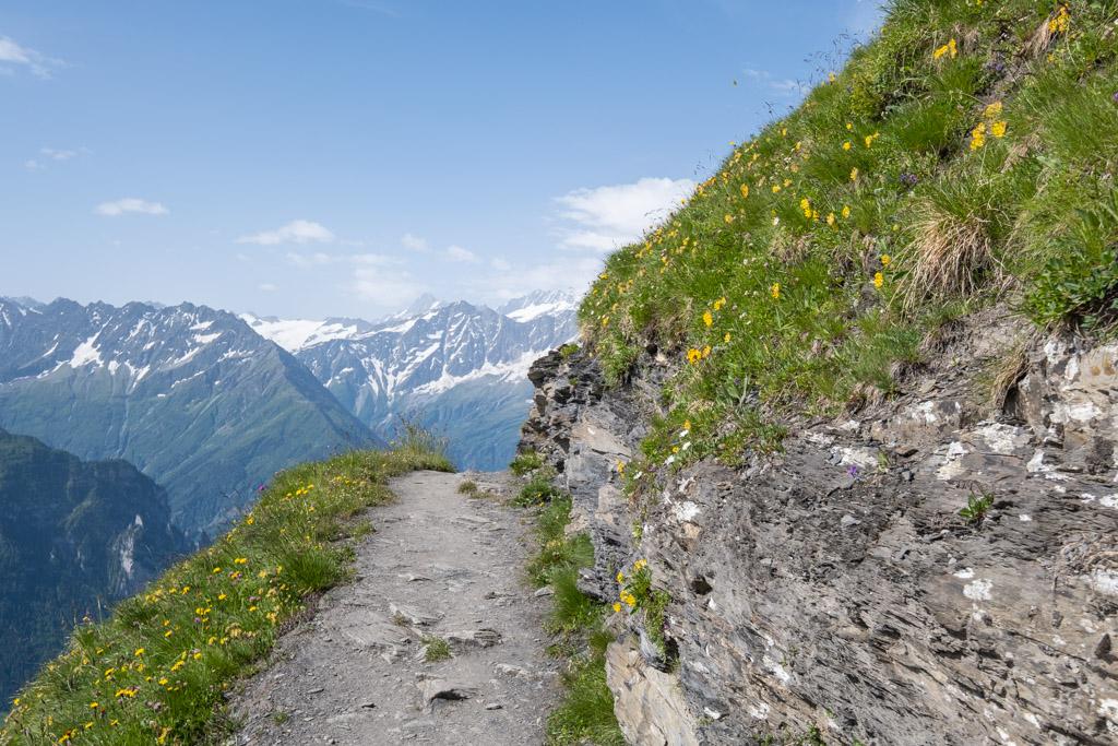 Via Alpina - En direction du Tannensee (Obwald, Suisse)